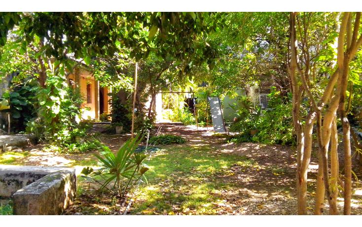 Foto de casa en venta en  , merida centro, m?rida, yucat?n, 1256851 No. 12