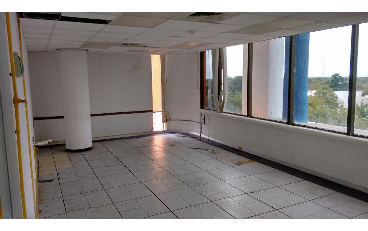 Foto de edificio en renta en  , merida centro, m?rida, yucat?n, 1266035 No. 12
