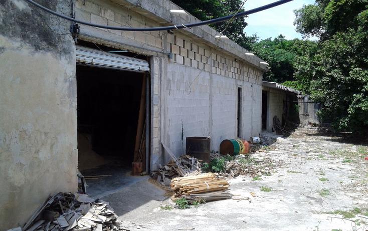 Foto de casa en venta en  , merida centro, mérida, yucatán, 1301495 No. 13