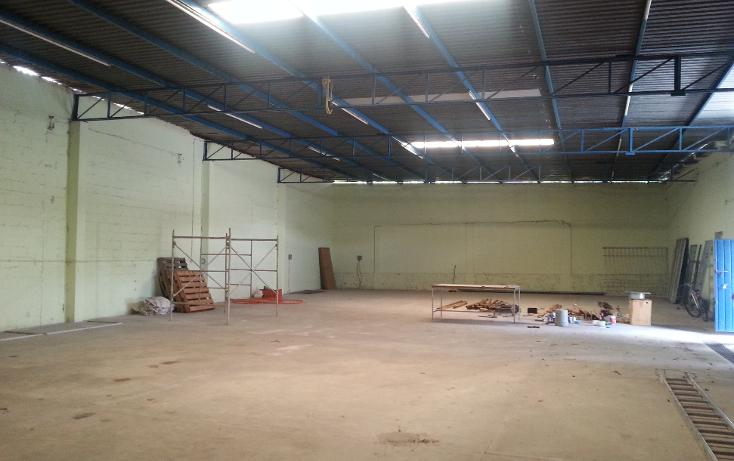 Foto de nave industrial en renta en  , merida centro, mérida, yucatán, 1326703 No. 04