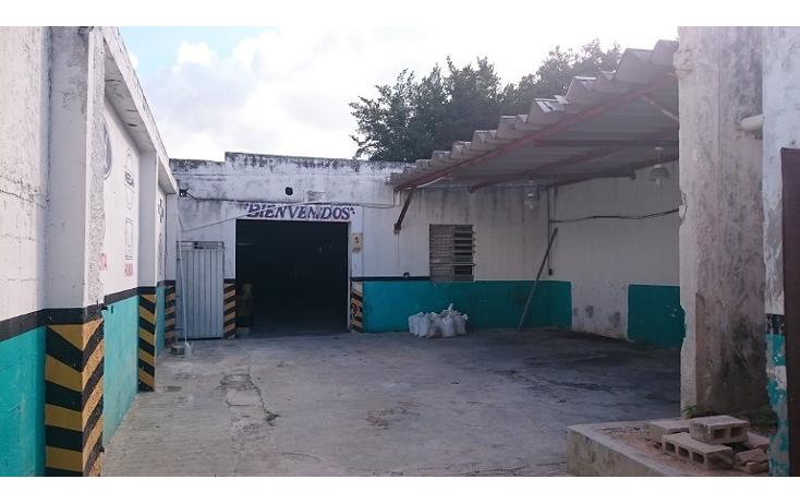 Foto de nave industrial en venta en  , merida centro, mérida, yucatán, 1328453 No. 02