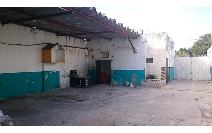 Foto de nave industrial en venta en  , merida centro, mérida, yucatán, 1328453 No. 13