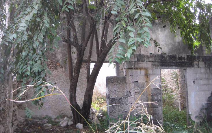 Foto de terreno comercial en venta en  , merida centro, mérida, yucatán, 1454913 No. 05