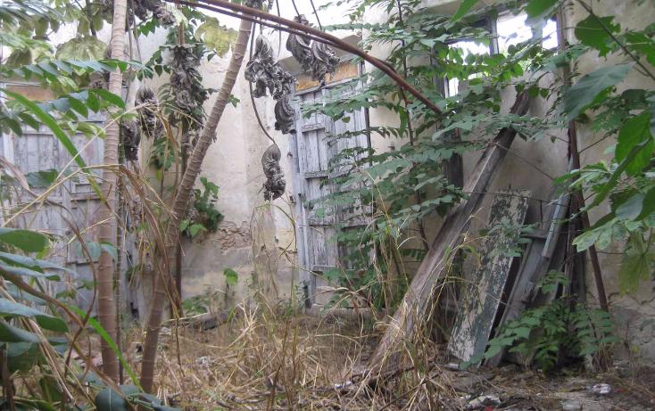 Foto de terreno comercial en venta en  , merida centro, mérida, yucatán, 1454913 No. 07