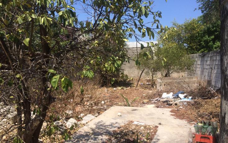 Foto de casa en venta en  , merida centro, m?rida, yucat?n, 1501833 No. 11