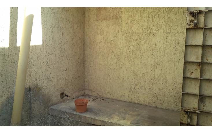 Foto de local en renta en  , merida centro, mérida, yucatán, 1556884 No. 05