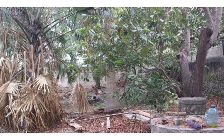 Foto de casa en venta en  , merida centro, mérida, yucatán, 1610158 No. 18
