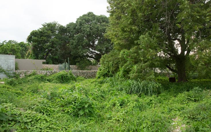 Foto de casa en venta en  , merida centro, m?rida, yucat?n, 1611878 No. 18