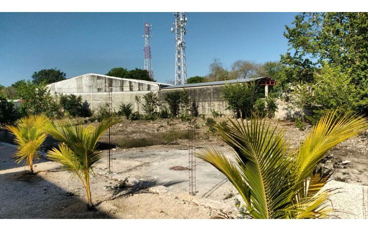 Foto de terreno habitacional en venta en  , merida centro, m?rida, yucat?n, 1957138 No. 01