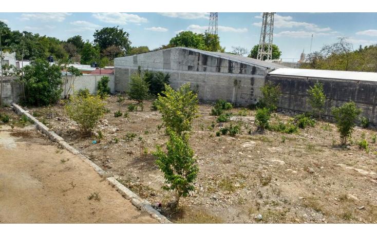 Foto de terreno habitacional en venta en  , merida centro, m?rida, yucat?n, 1957138 No. 05