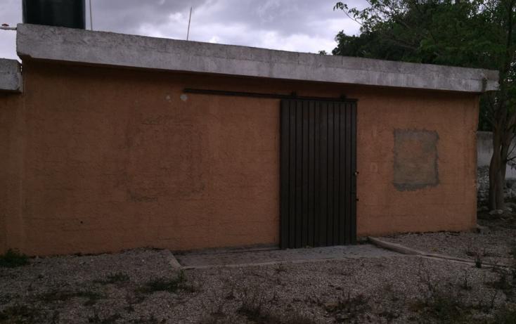 Foto de casa en venta en  , merida centro, mérida, yucatán, 1979648 No. 04