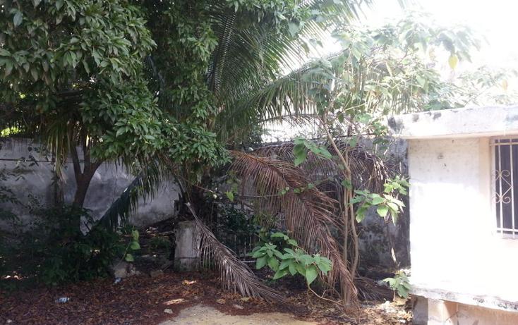 Foto de casa en venta en  , merida centro, mérida, yucatán, 2044406 No. 06