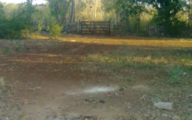 Foto de terreno comercial en venta en  , merida centro, m?rida, yucat?n, 370852 No. 01