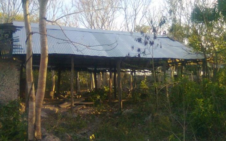 Foto de terreno comercial en venta en  , merida centro, m?rida, yucat?n, 370852 No. 02