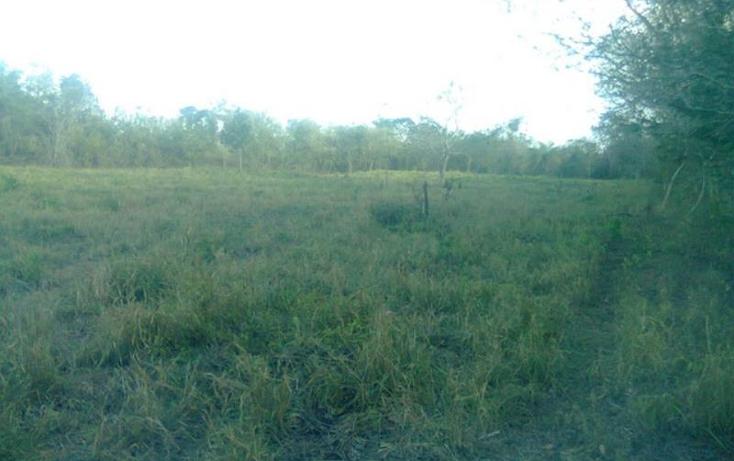 Foto de terreno comercial en venta en  , merida centro, m?rida, yucat?n, 370852 No. 03