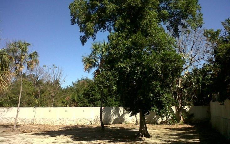 Foto de casa en venta en  , merida centro, mérida, yucatán, 448100 No. 13