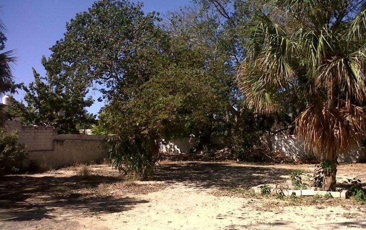 Foto de casa en venta en  , merida centro, mérida, yucatán, 448100 No. 14