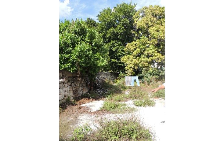 Foto de casa en venta en  , merida centro, m?rida, yucat?n, 887181 No. 14