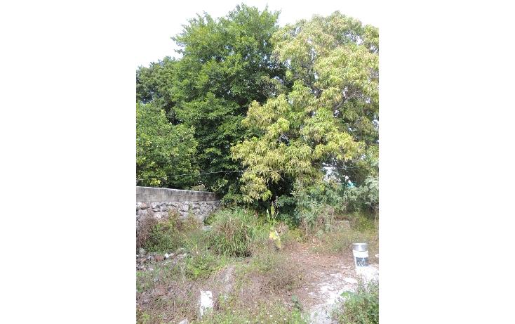Foto de casa en venta en  , merida centro, m?rida, yucat?n, 887181 No. 15