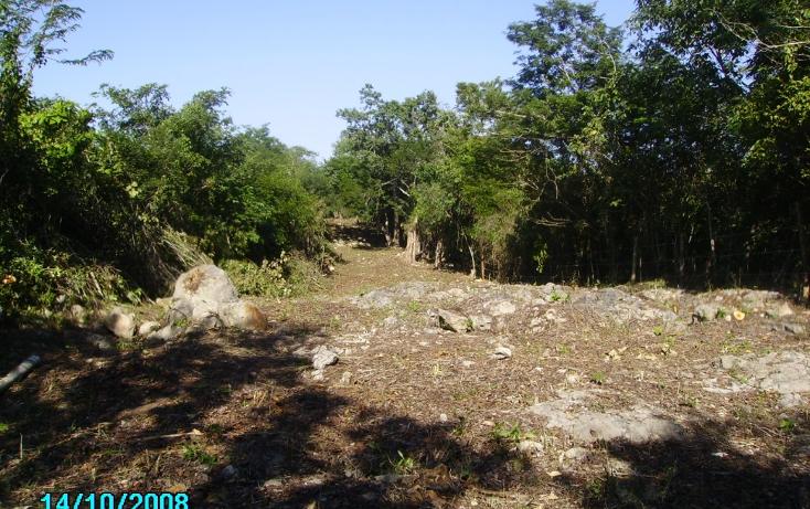 Foto de terreno comercial en venta en  , mérida, mérida, yucatán, 1062829 No. 07