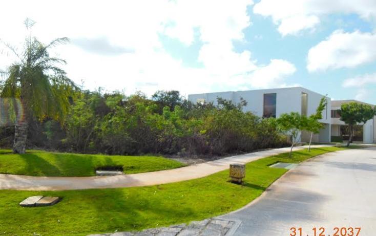 Foto de terreno habitacional en venta en  , mérida, mérida, yucatán, 1357267 No. 04
