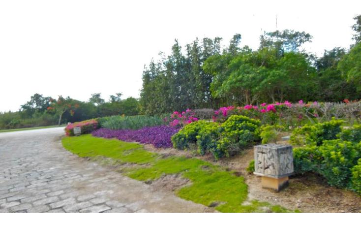 Foto de terreno habitacional en venta en  , mérida, mérida, yucatán, 1357267 No. 05