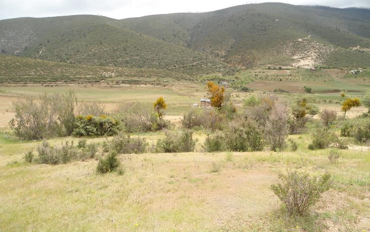 Foto de terreno habitacional en venta en  , mesa de las tablas, arteaga, coahuila de zaragoza, 1132079 No. 01