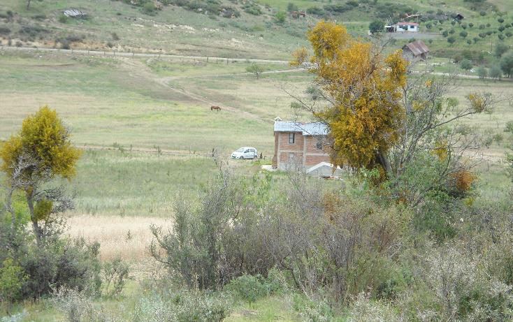 Foto de terreno habitacional en venta en  , mesa de las tablas, arteaga, coahuila de zaragoza, 1132079 No. 02