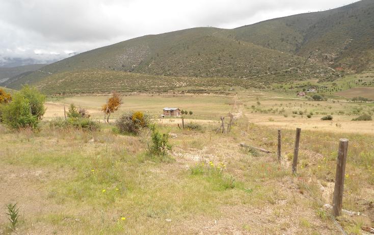 Foto de terreno habitacional en venta en  , mesa de las tablas, arteaga, coahuila de zaragoza, 1132079 No. 04