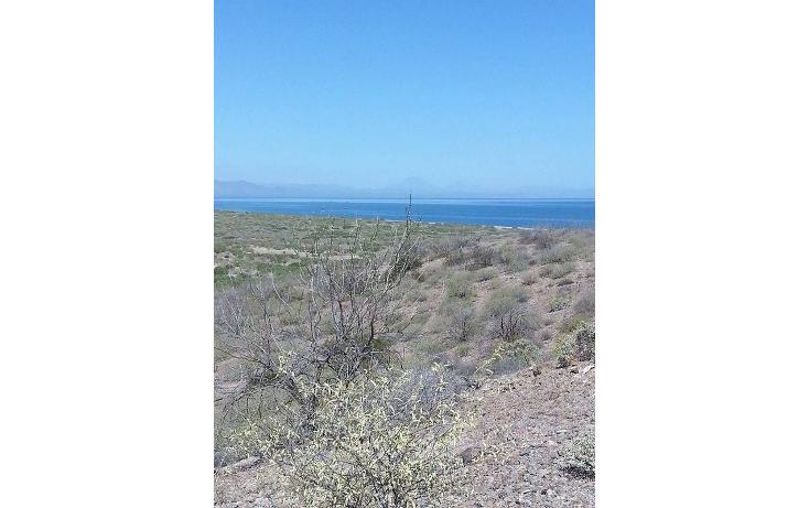 Foto de terreno comercial en venta en  , mesa francia, mulegé, baja california sur, 1407501 No. 15