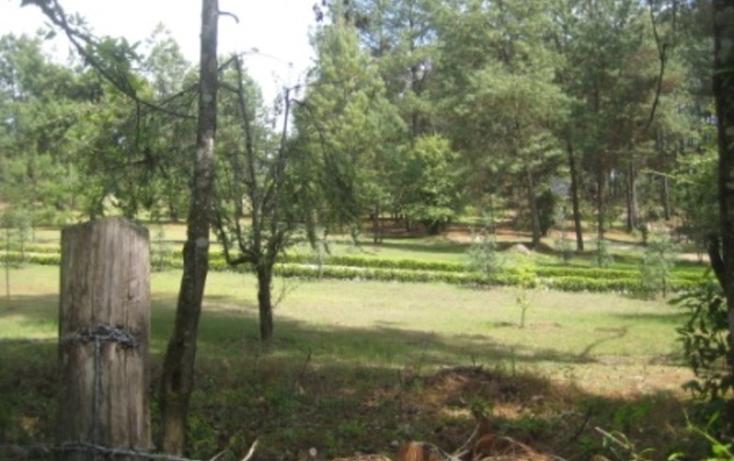 Foto de terreno habitacional en venta en  , mesa rica, valle de bravo, m?xico, 829429 No. 01