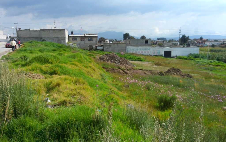 Foto de terreno habitacional en venta en  , mexicaltzingo, mexicaltzingo, méxico, 1097863 No. 02