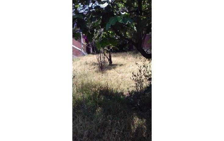 Foto de casa en venta en  , m?xico 68, naucalpan de ju?rez, m?xico, 1722300 No. 28