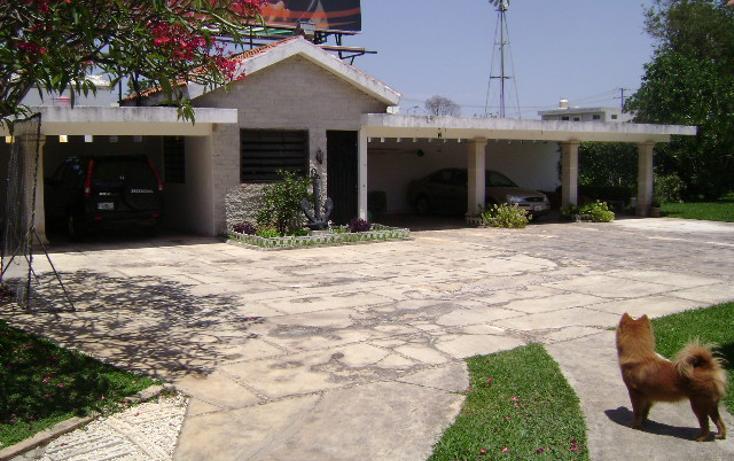 Foto de local en renta en  , méxico, mérida, yucatán, 1109265 No. 06