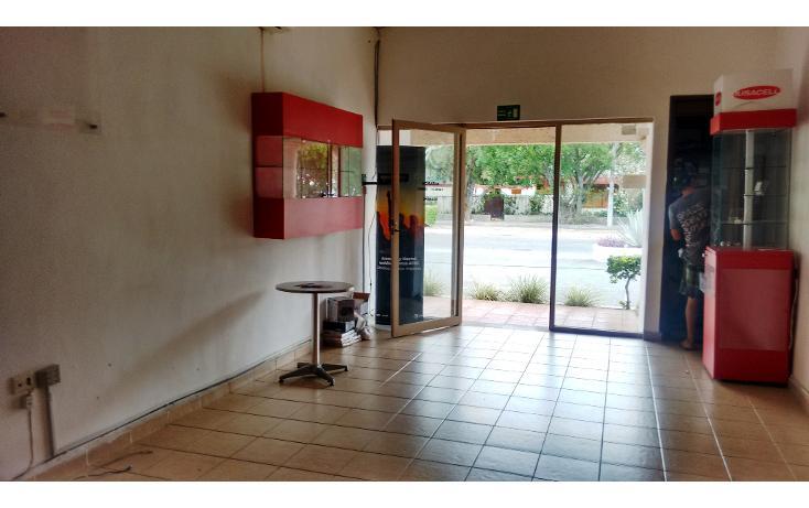 Foto de local en renta en  , méxico, mérida, yucatán, 1698796 No. 05