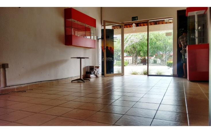 Foto de local en renta en  , méxico, mérida, yucatán, 1698796 No. 06