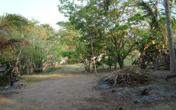 Foto de terreno habitacional en venta en m?xico norte 452, las jarretaderas, bah?a de banderas, nayarit, 393975 No. 06