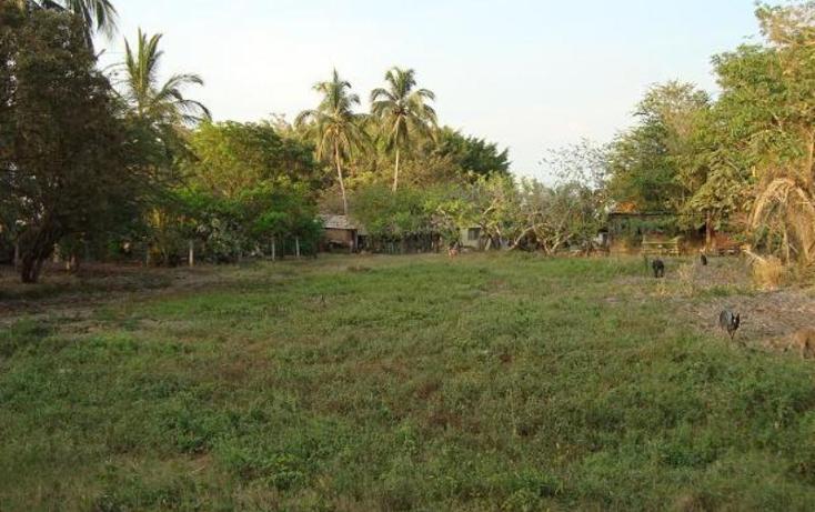 Foto de terreno habitacional en venta en m?xico norte 452, las jarretaderas, bah?a de banderas, nayarit, 393975 No. 07