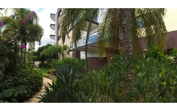 Foto de departamento en renta en  , méxico norte, mérida, yucatán, 1550450 No. 03