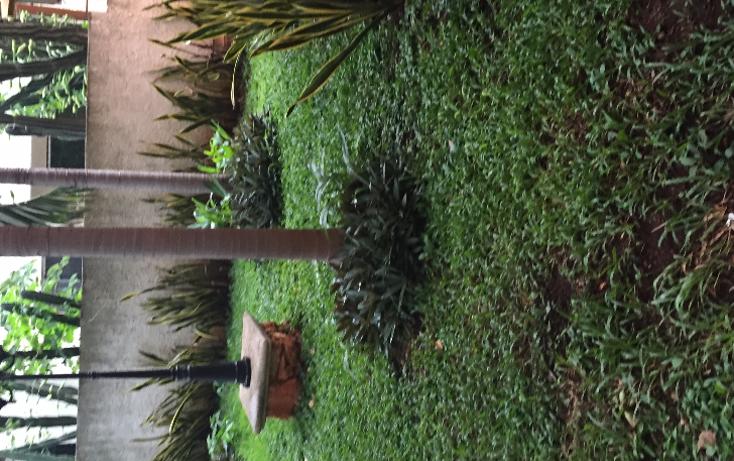 Foto de departamento en renta en  , méxico oriente, mérida, yucatán, 1244715 No. 07