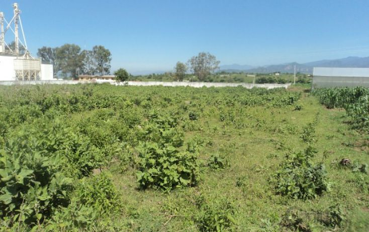 Foto de terreno habitacional en venta en méxico yecapixtla, el salto, atlatlahucan, morelos, 1710706 no 06