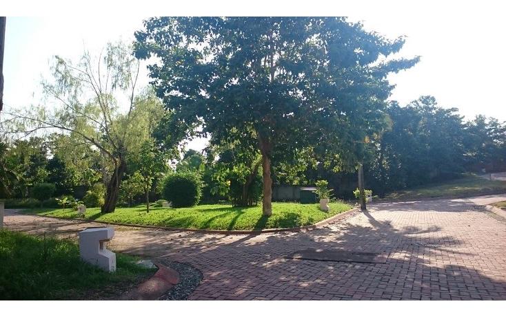 Foto de terreno habitacional en venta en  , mezcales, bahía de banderas, nayarit, 1600516 No. 03