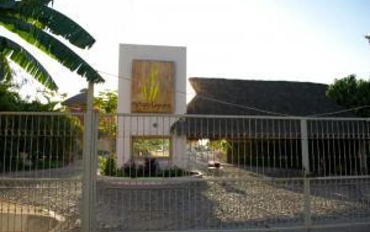Foto de terreno habitacional en venta en  , mezcales, bahía de banderas, nayarit, 1600516 No. 13