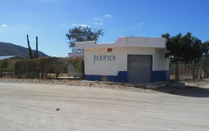 Foto de terreno habitacional en venta en  , mezquitito, la paz, baja california sur, 3428156 No. 03