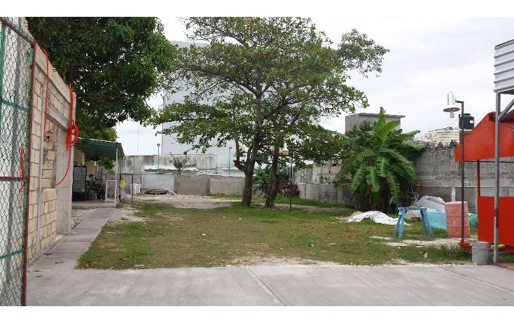Foto de oficina en renta en  , miami, carmen, campeche, 1207201 No. 02