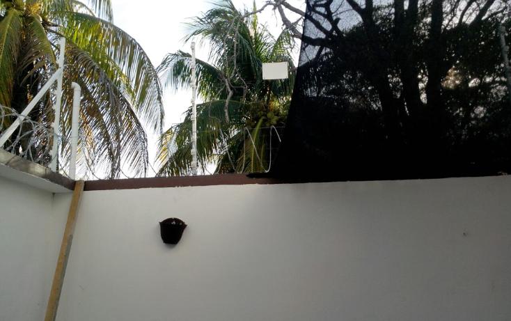 Foto de casa en renta en  , miami, carmen, campeche, 1237479 No. 09