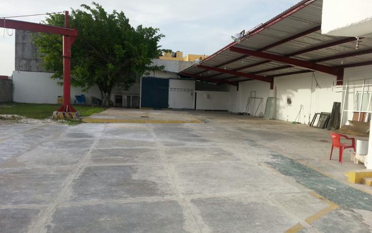 Foto de nave industrial en renta en  , miami, carmen, campeche, 1417147 No. 04