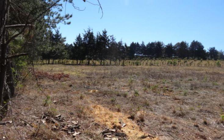 Foto de terreno industrial en venta en, michoacán, pátzcuaro, michoacán de ocampo, 1443421 no 04
