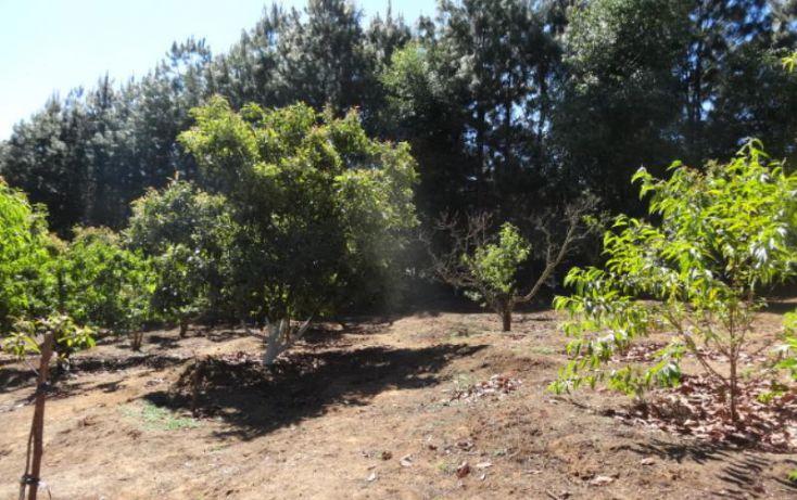 Foto de terreno industrial en venta en, michoacán, pátzcuaro, michoacán de ocampo, 1443421 no 15