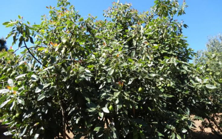 Foto de terreno industrial en venta en, michoacán, pátzcuaro, michoacán de ocampo, 1443421 no 18